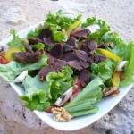 Gésiers de canard en salade Ferme de Ramon